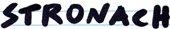 Frank Stronach, Team Stronach, Logo handgeschrieben